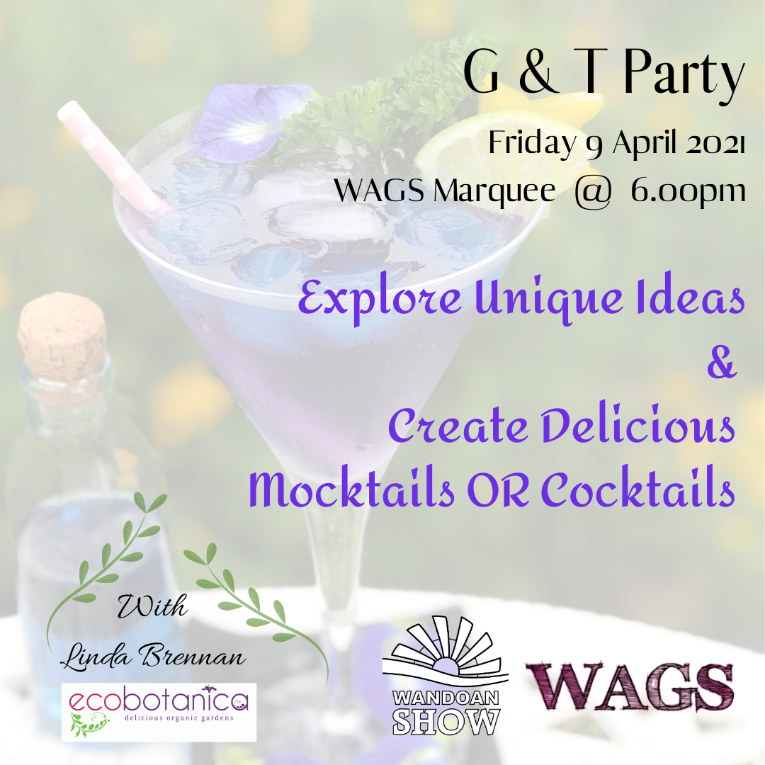 Insta G & T Party